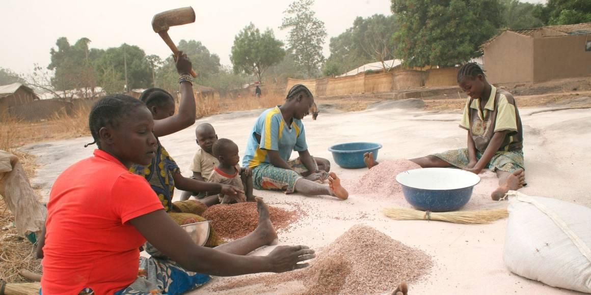 Naiset Papoan kaupungissa käsittelevät hirssiä. Kun ihmiset pakotetaan pakenemaan kodeistaan, he eivät myöskään pysty huolehtimaan viljelykasveista. Konfliktit johtavat siis myös siviiliväestön ruokapulaan. Irin/Anthony Morland